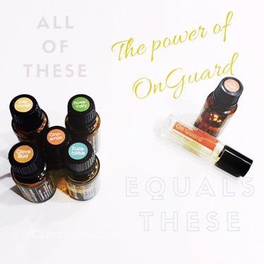 OnGuard: the PowerhouseProtector